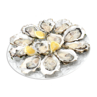 Icon-Oysters